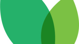 Brightmark Logo Icon